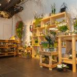 030-Blumenfreude-Neueröffnung-7-1-2015